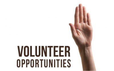 Two Volunteer Opportunities